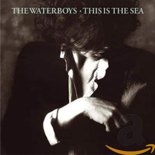 The Waterboys - This Is the Sea - Zortam Music