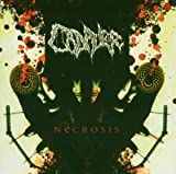 album art to Necrosis