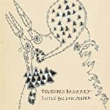 album art by Devendra Banhart