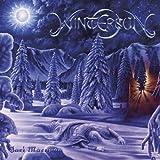 album art to Wintersun