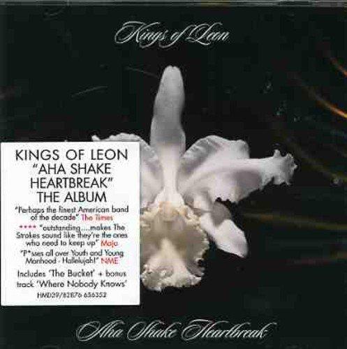 KINGS OF LEON - ×2 Youth & Young Manhood / Aha Shake Heartbreak - Zortam Music