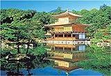 1000ピース 新緑の金閣寺
