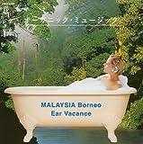 オーガニック・ミュージック マレーシア〈ボルネオ〉の森