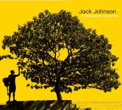 Jack Johnson - If I Could Lyrics - Zortam Music