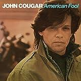 album art to American Fool