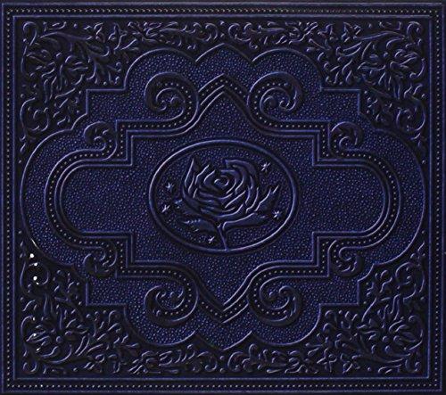 Ryan Adams - Rosebud Lyrics - Zortam Music