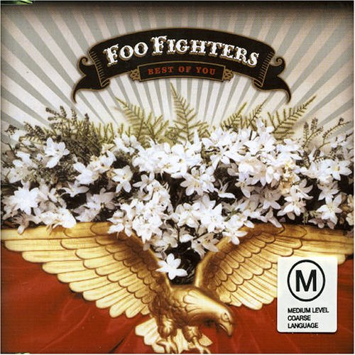 Foo Fighters - Best of You [UK-Import] - Zortam Music