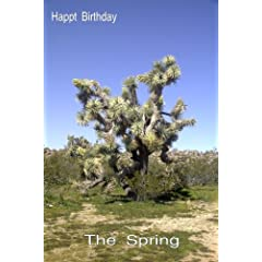 Relaxation: The Spring:Happy Birthday Greeting Card