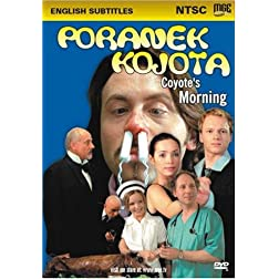 Coyote's Morning -- Poranek kojota