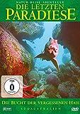 Die letzten Paradiese: Die Bucht der vergessenen Haie
