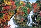 1000ピース 秋に染まる竜頭の滝-栃木 10-641S