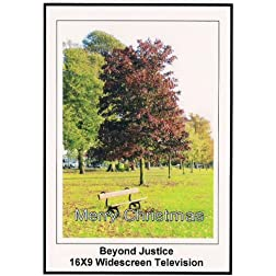 Beyond Justice: Widescreen TV.: Merry Christmas