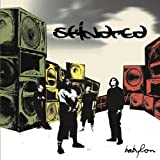 album art by Skindred