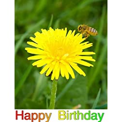 Be Big: Greeting Card: Happy Birthday