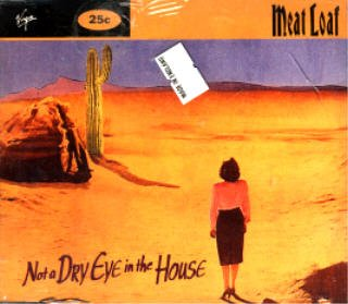 Meat Loaf - Not A Dry Eye In The House - Zortam Music