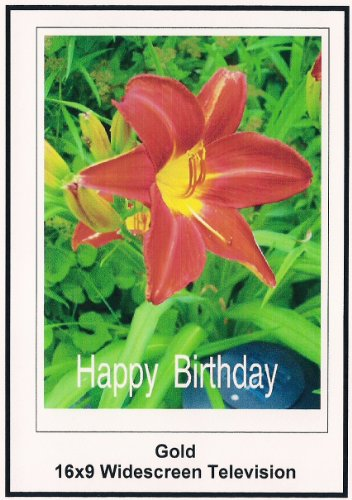 Gold: Widescreen TV.:Greeting Card: Happy Birthday