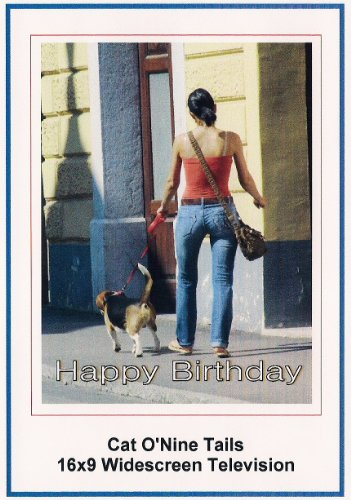 Cat O'Nine Tails: Widescreen TV.: Greeting Card: Happy Birthday
