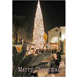 Legend of Bigfoot: Widescreen TV: Greeting card: Merry Christmas