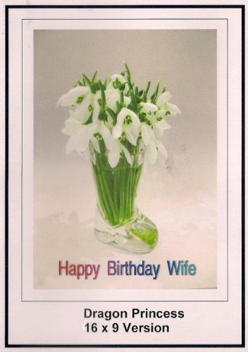 Dragon Princess: Greeting Card: Happy Birthday Wife