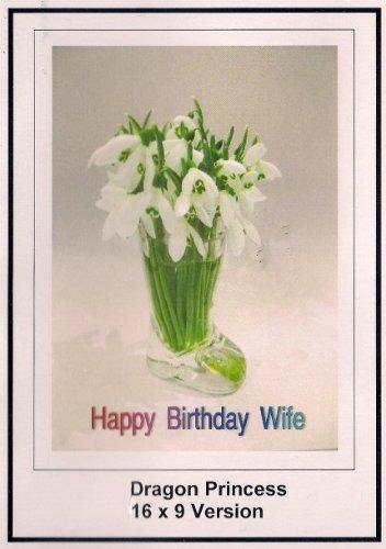 Dragon Princess: Greeting Card: Happy Birthday Wife