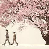 桜 Spring Package