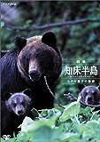 四季・知床半島 ~ヒグマ親子の物語~