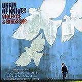 Skivomslag för Violence and Birdsong