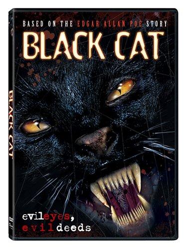 Black Cat / Черная кошка (2004)