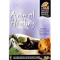 Animal Healing