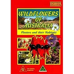 Wildflowers Of Australia [PAL]