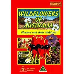 Wildflowers Of Australia [PAL]