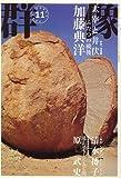 群像 2006年 11月号 [雑誌]