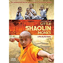 Little Shaolin Monks