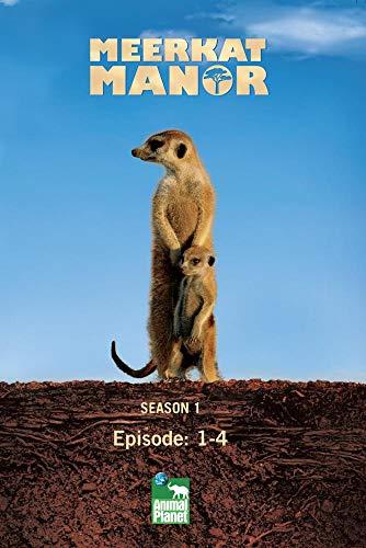 Meerkat Manor Season 1 - Episode: 1-4