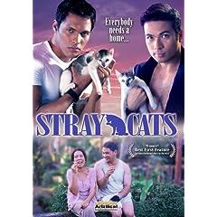 Stray Cats (Pusang Gala)