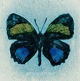 ART-SCHOOL『Flora(初回限定盤)(DVD付)』
