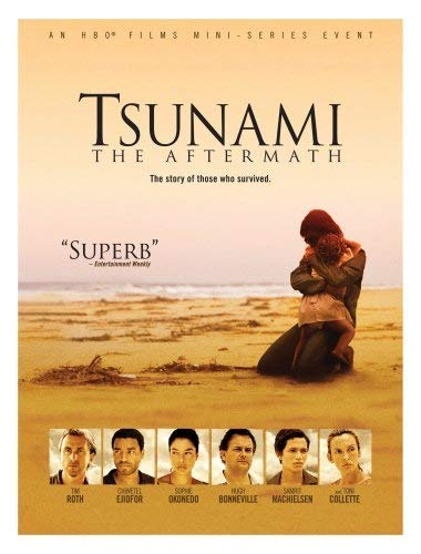 Tsunami - The Aftermath