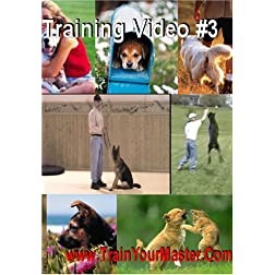 Obedience Training Video Four