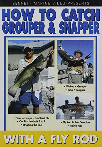 Captain Frank: How To Grouper & Snapper On A Fly Road
