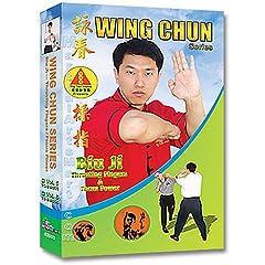 Wing Chun - Biu Ji - Thrusting Fingers & Focus Power DVD