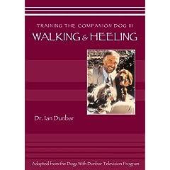 Training The companion Dog 3 --  Walking and Heeling