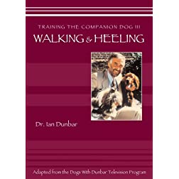Training The companion Dog 3 --  Walking and Heeling