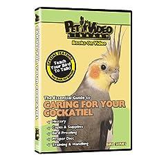 COCKATIEL DVD! + Bonus Video: Train Your Bird to Talk