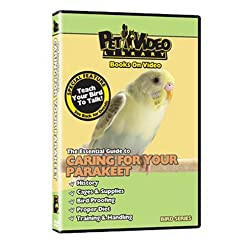 PARAKEET DVD! + Train your Bird to Talk Bonus Video