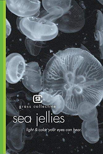 Sea Jellies