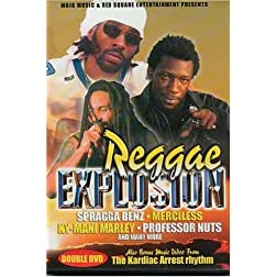 Reggae Explosion 2003 DVD