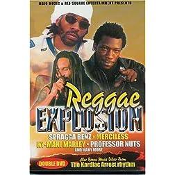 Reggae Explosion 2003 DVD