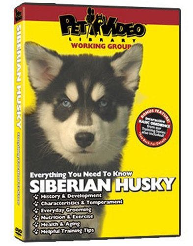 SIBERIAN HUSKY DVD! Includes Dog & Puppy Training Video