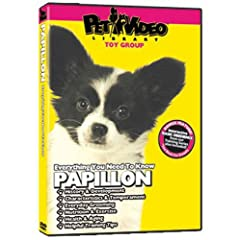 PAPILLON DVD! Includes Dog & Puppy Training Video