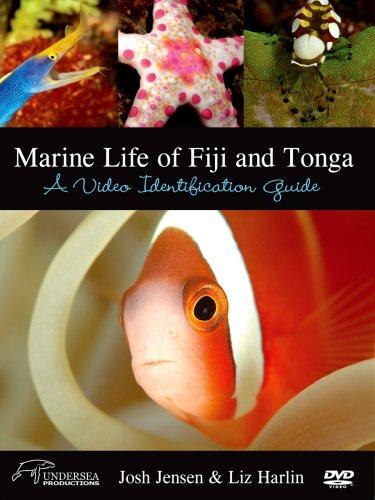 Marine Life of Fiji and Tonga: A Video Identification Guide